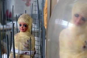 Barbara Pelizzon /Barbie